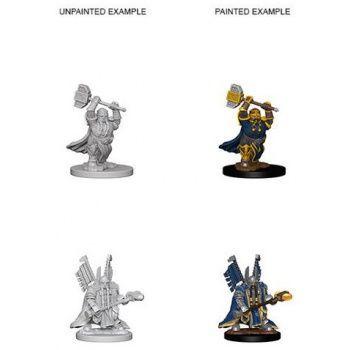 Dungeons & Dragons Nolzur`s Marvelous Unpainted Miniatures: W4 Dwarf Male Paladin