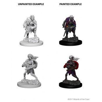 Dungeons & Dragons Nolzur`s Marvelous Unpainted Miniatures: W4 Drow
