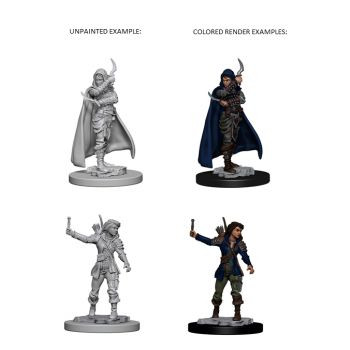 Pathfinder Deep Cuts Unpainted Miniatures: W1 Human Female Rogue