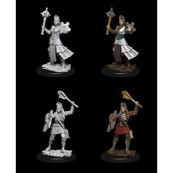 Dungeons & Dragons Nolzur`s Marvelous Unpainted Miniatures: W8  Female Human Cleric