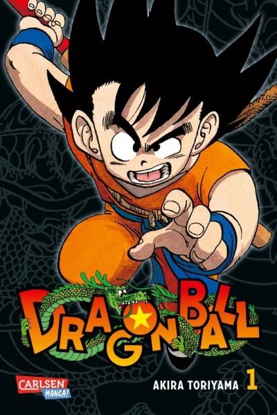 Dragon Ball Massiv 01