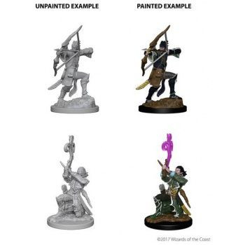 Dungeons & Dragons Nolzur`s Marvelous Unpainted Miniatures: W4 Elf Male Bard