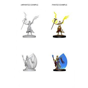 Dungeons & Dragons Nolzur`s Marvelous Unpainted Miniatures: W3 Elf Female Wizard