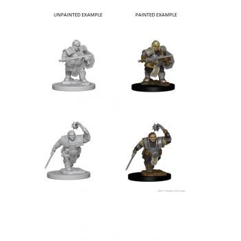 Dungeons & Dragons Nolzur`s Marvelous Unpainted Miniatures: W2 Dwarf Female Fighter