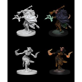 Dungeons & Dragons Nolzur`s Marvelous Unpainted Miniatures: W6 Female Tiefling Warlock