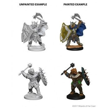Dungeons & Dragons Nolzur`s Marvelous Unpainted Miniatures: W4 Dragonborn Male Paladin