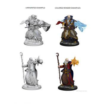 Dungeons & Dragons Nolzur`s Marvelous Unpainted Miniatures: W1 Human Male Wizard
