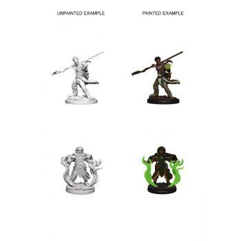 Dungeons & Dragons Nolzur`s Marvelous Unpainted Miniatures: W3 Human Male Druid