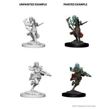Dungeons & Dragons Nolzur`s Marvelous Unpainted Miniatures: W4 Air Genasi Female Rogue